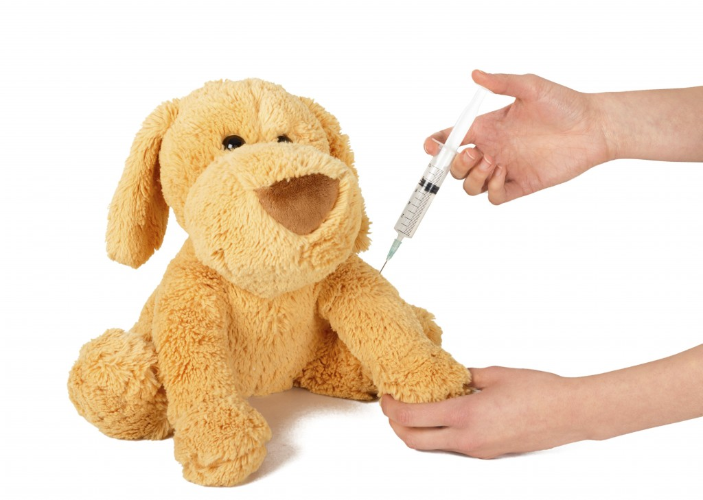 Pediatrician giving protective vaccine to play dog.